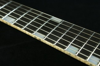 Arc-SP_StainlessFret