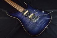 DST-Pro24 Mahopgany Limited